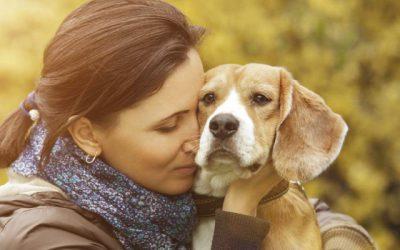 Demuéstrale tu amor a tu mejor amigo: tu mascota