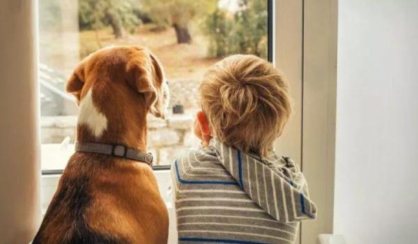 Tener un perrihijo en casa favorece el desarrollo de los niños